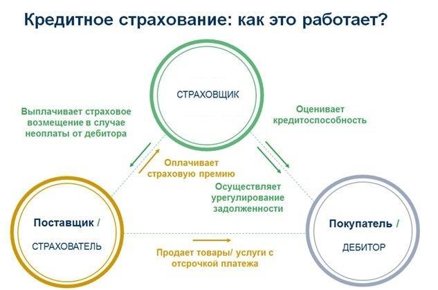 Договор коллективного страхования россельхозбанк