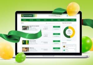 Изображение - Как зарегистрироваться и войти в клиент-банк россельхозбанка ce0e31f6c02a50558ff69ef5556cdb22-300x210