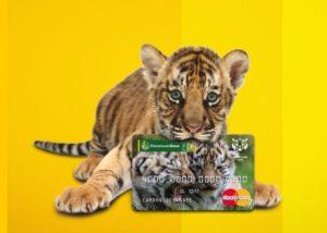 Дебетовая карта «Амурский тигр» Россельхозбанка